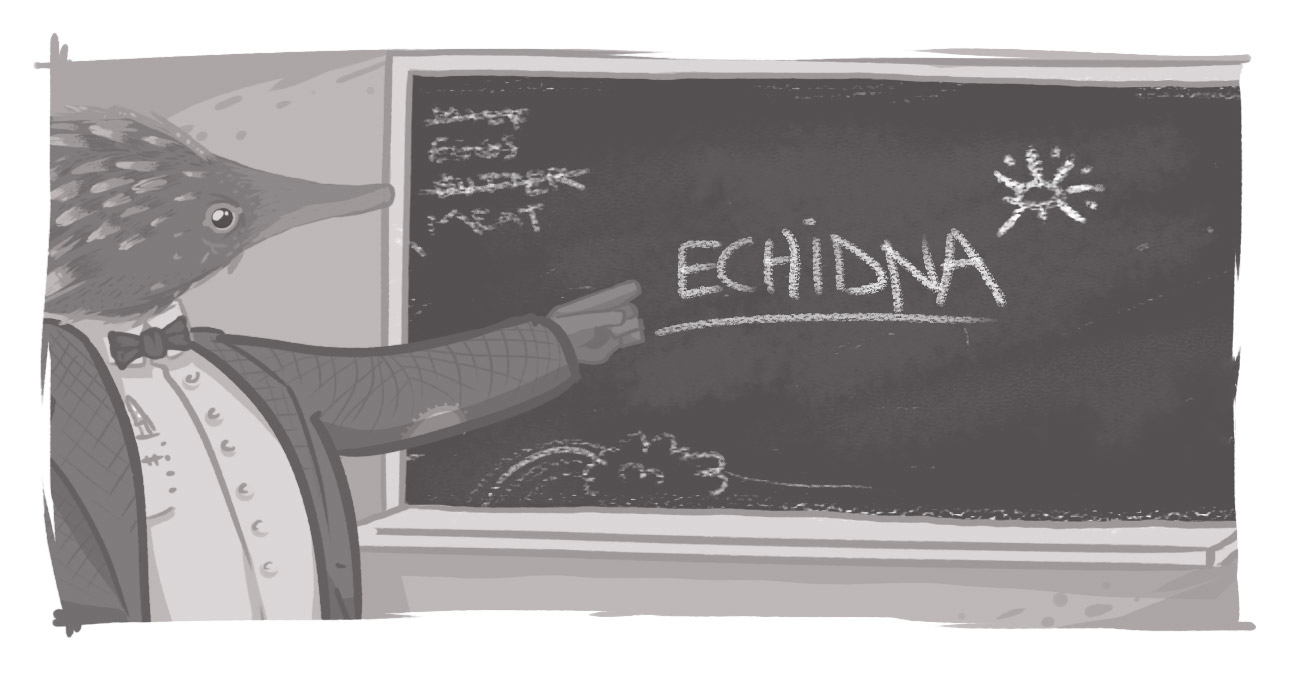 "An image of an echidna at a blackboard, with ""Echidna"" written on it."