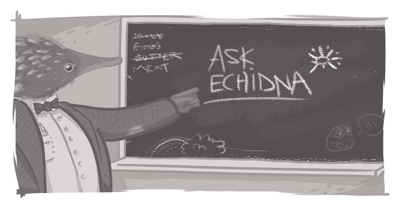 Ask Echidna written on chalkboard