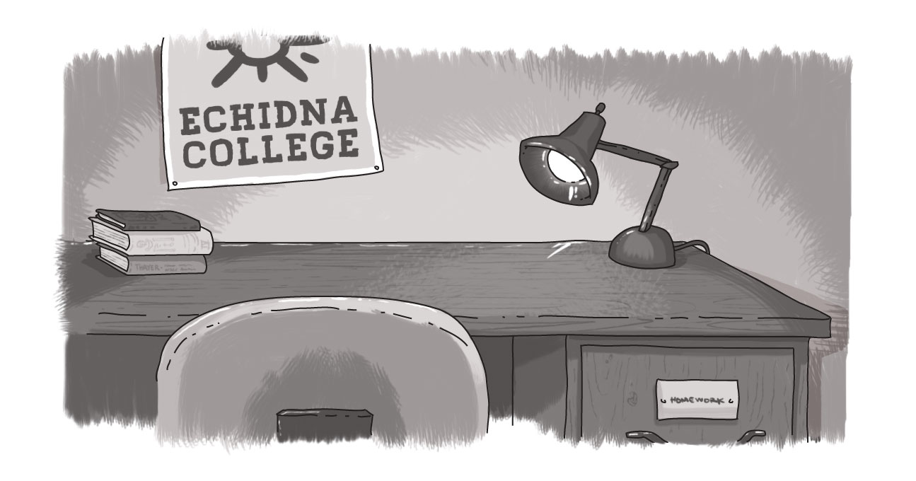 desk with Echidna College poster on wall