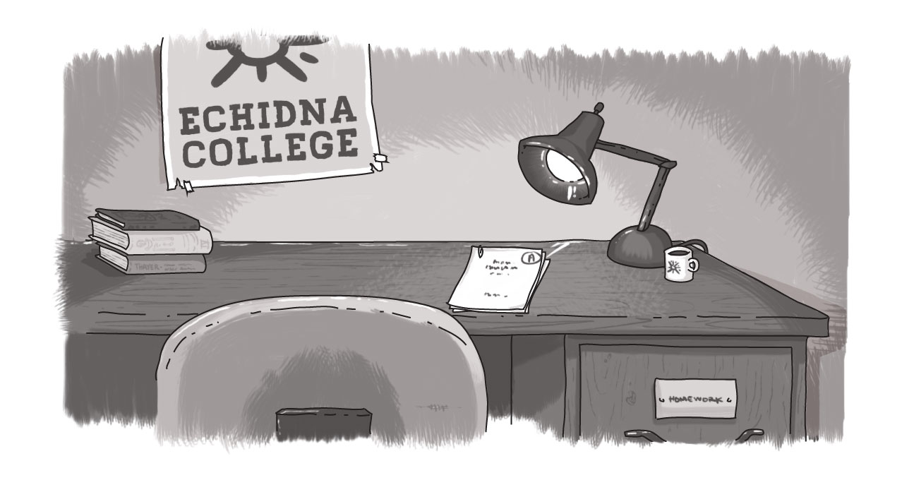 Echidna college, desk with books and homework