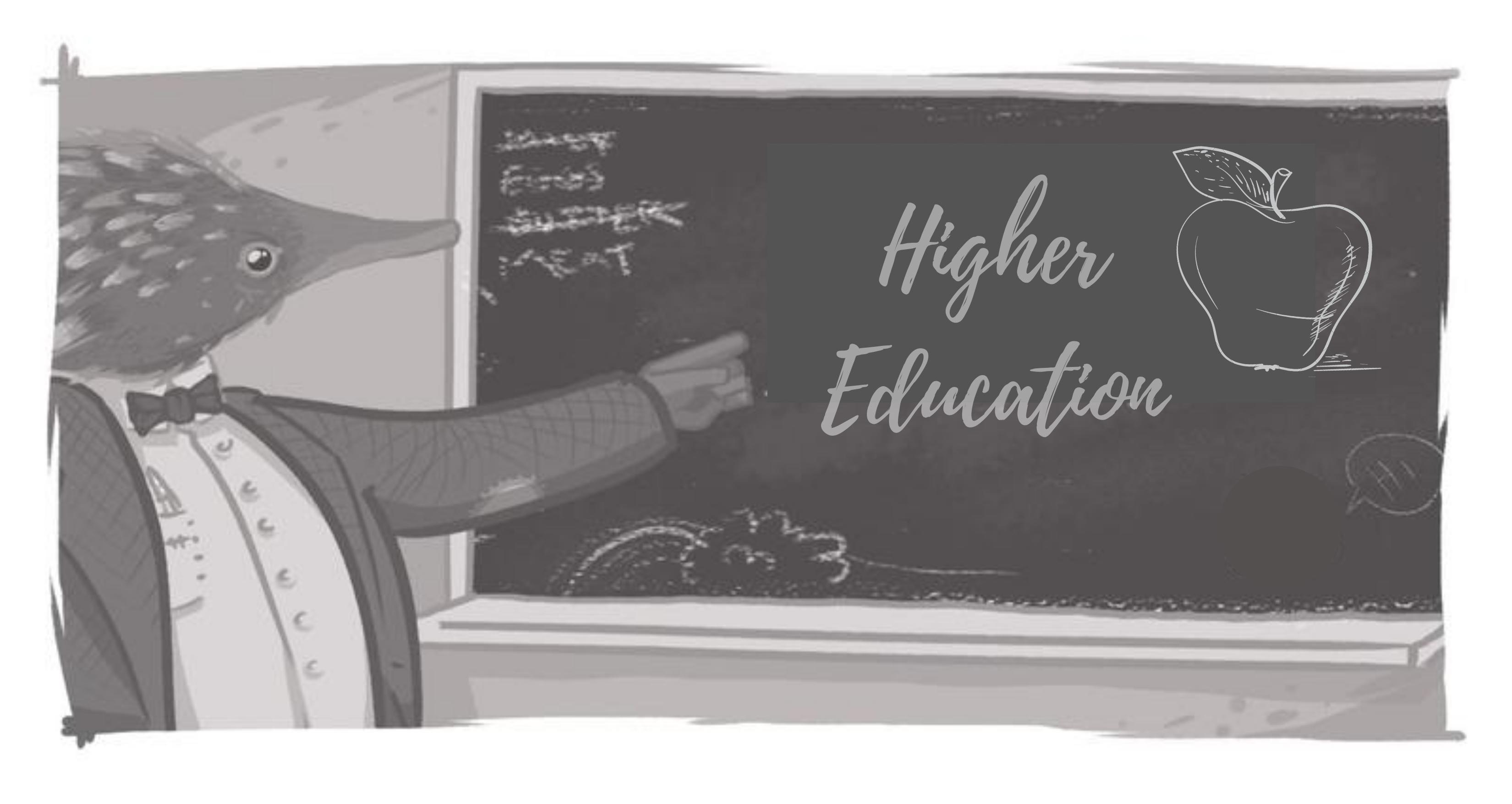 echidna pointing to black board that says higher education with drawings