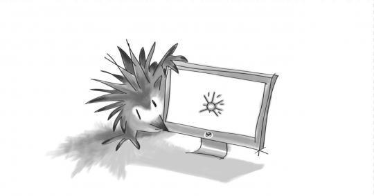 Articles   Digital Echidna Blog