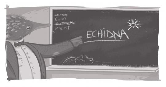 An image of an echidna, dressed as a teacher, in front of a blackboard.