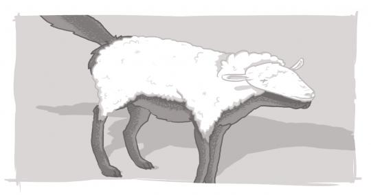 An image of a wolf in sheep's clothing, used in conjunction with a Consider the Source blog.