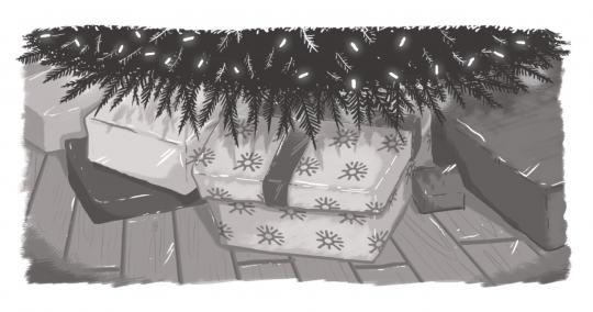 A picture of a gift underneath a Christmas tree, wrapped with Echidna-branded wrapping paper.