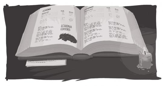 An image of a book open, with a description of Echidna and Echidna editors.