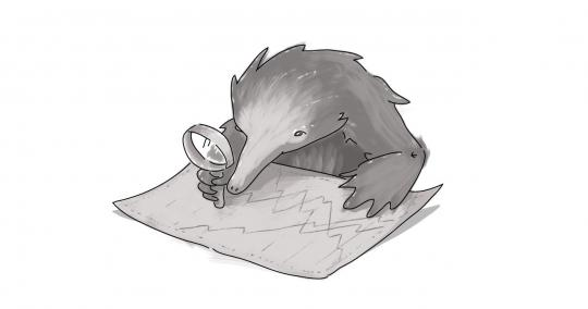 Echidna looking at a chart