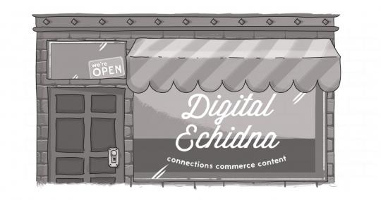 "An image of a storefront, with ""Digital Echidna"" written on the glass."
